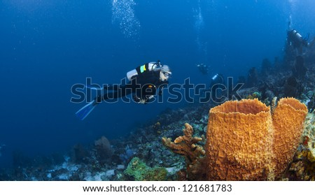 Diver and Orange Sponges in St Lucia and divers in the background - stock photo