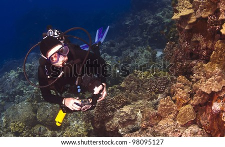 Diver checking out the Coral in Hawaii with a Camera - stock photo