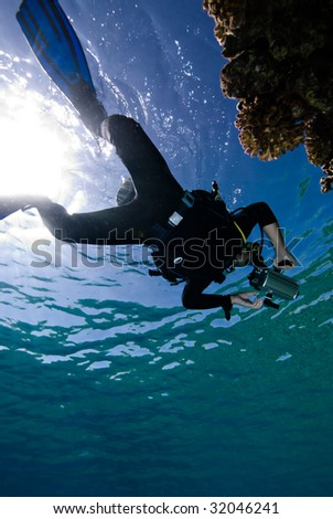 Diver enjoying a tropical reef - stock photo