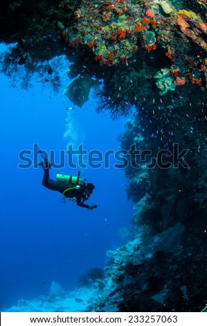 Diver swimming around in Banda, Indonesia underwater photo. There are sponge, reef fishes, sea fan. - stock photo