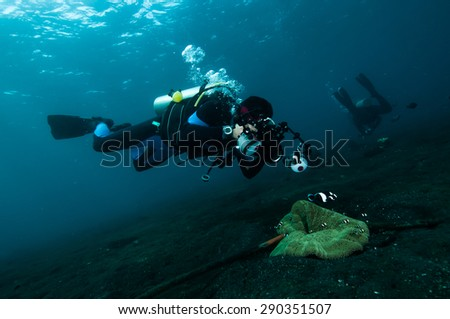diver take a photo video upon coral lembeh indonesia scuba diving - stock photo