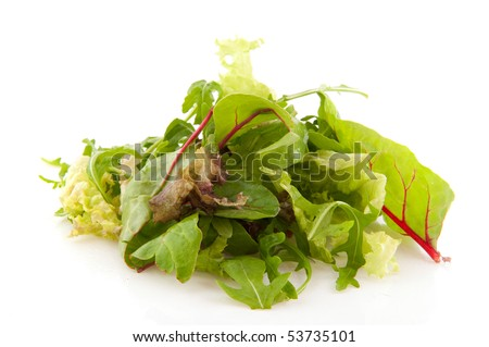 Diversity of mixed lettuce as red and curly and oak leaves - stock photo