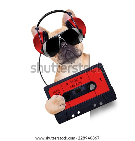dj bulldog dog with headphones listening to music holding a cassette, besides a white banner or placard , isolated on white background - stock photo