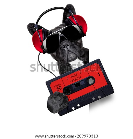 dj dog playing music cassette beside a white and blank empty banner or placard - stock photo