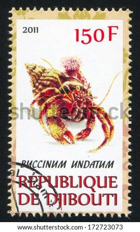 DJIBOUTI - CIRCA 2011: stamp printed by Djibouti, shows common whelk, circa 2011 - stock photo
