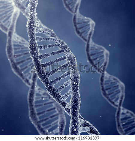 Dna double helix molecules and chromosomes - stock photo