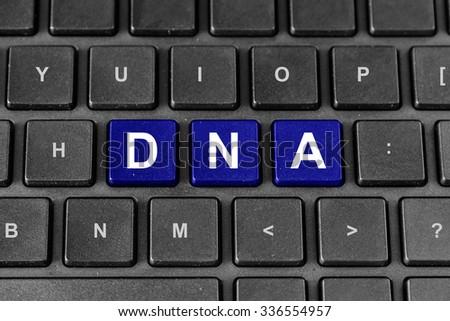 DNA or Deoxyribonucleic Acid word on keyboard - stock photo