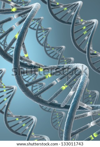 DNA strands with emphasis on bonds between nucleotides. 3D render. - stock photo