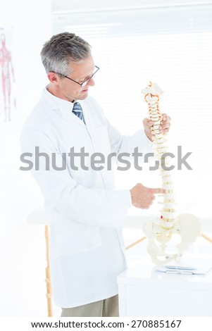 Doctor showing anatomical spine in clinic - stock photo