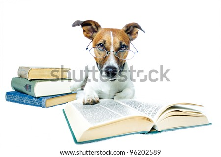 dog books - stock photo