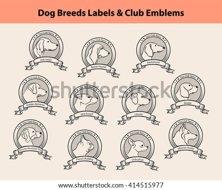 Dog Breeds Labels Set. Dog Clubs Emblems. Profile Silhouette Dog Faces Badges. Setter, Labrador,  Retriever, Jack Russel, Bernese, French Bulldog, Basset Hound, Chihuahua, Husky, Beagle, Dachshund  - stock photo