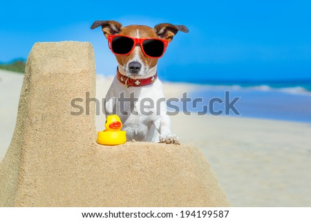 dog building a sandcastle with red sunglasses in summer vacation - stock photo