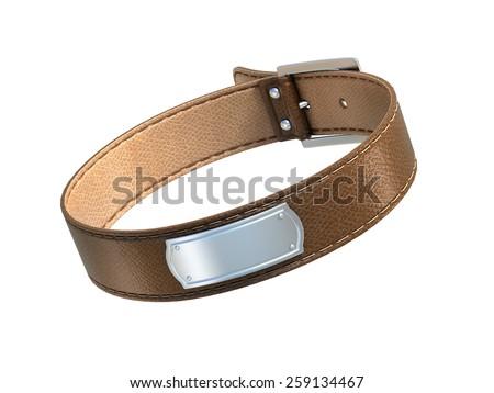 dog collar isolated on white - stock photo