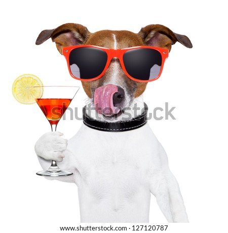 dog cooling with a martini refreshment cocktail - stock photo