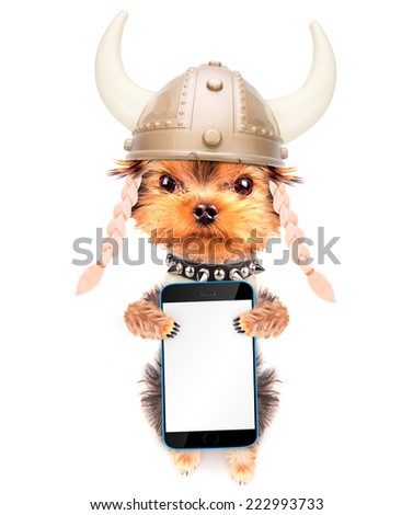 dog dressed up as a viking holding phone with empty white screen - stock photo