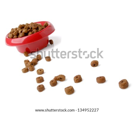 dog food isolated on white background - stock photo