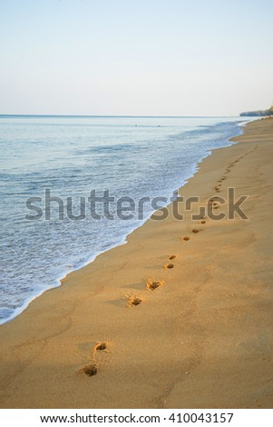 dog Footprints in the sand at sunset - stock photo
