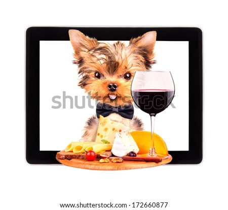 dog holding tray with food on tablet screen - stock photo