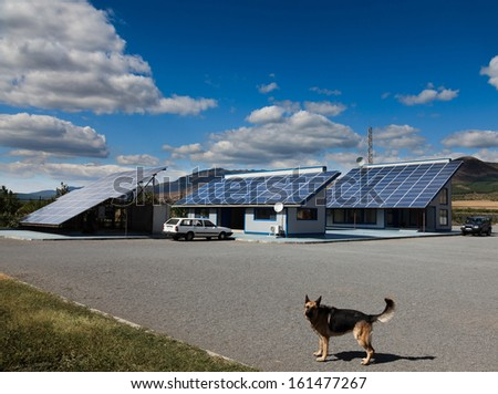 Dog in front of a house with photovoltaic installation - stock photo