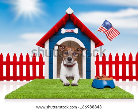 dog in house with bowl full of food and american flag - stock photo
