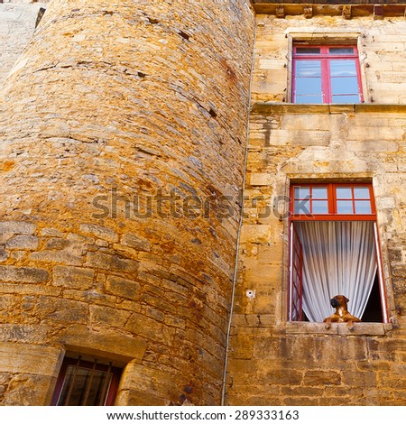 Dog in the Window of Old Stone French House - stock photo