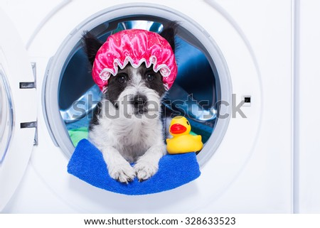 dog inside a washing machine ready to clean the  dirt, wearing a shower cap , towel and rubber duck as companion - stock photo