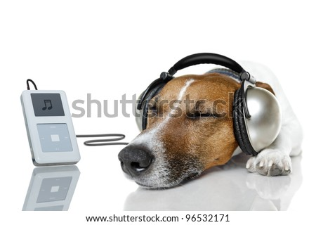 Dog listen to music with a music player - stock photo