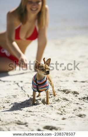 Dog on Beach with Young Woman - stock photo