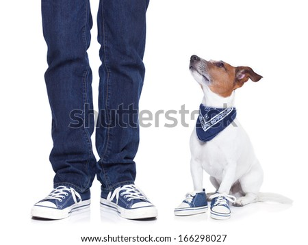 dog owner with dog both wearing sneakers and a skateboard - stock photo