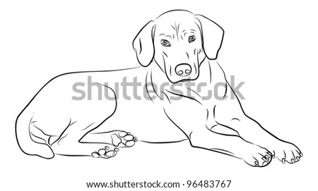dog silhouette isolated on white background - freehand - stock photo