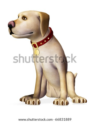 dog sit pose - stock photo