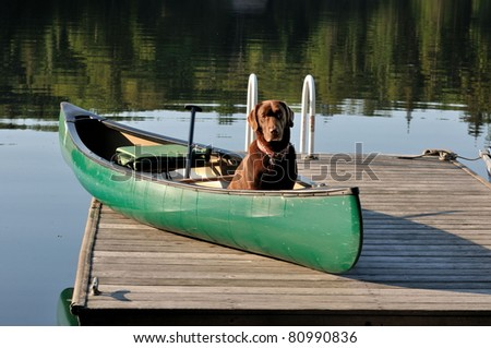 Dog sits in canoe on dock ready to paddle/Let's Paddle - stock photo