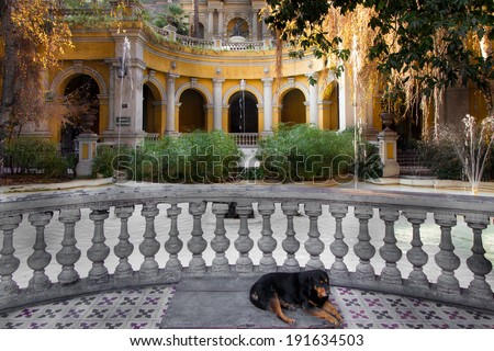 Dog sleeping in a courtyard of a park on Santa Lucia Hill, Santiago, Chile - stock photo