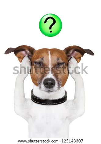 dog thinking with a question mark on top - stock photo