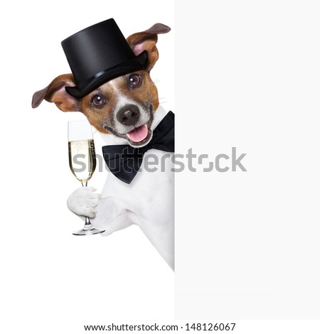 dog toasting with champagne glass behind  a white placard - stock photo