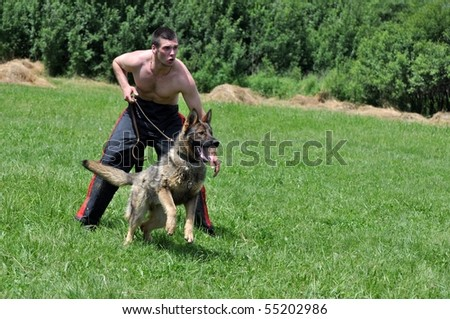 dog training - stock photo