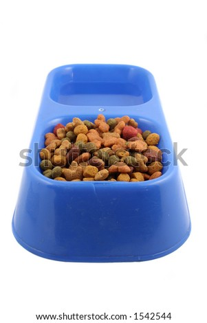dog  tray with food and water - stock photo