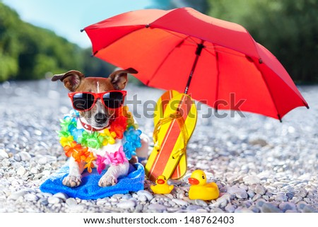 dog under umbrella at beach with yellow rubber ducks - stock photo