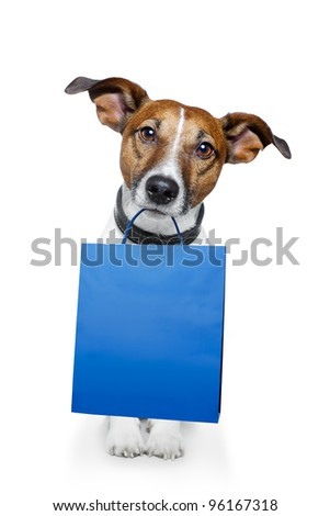 dog with a shopping bag - stock photo