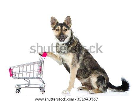 Dog with shopping trolley. isolated on white background - stock photo