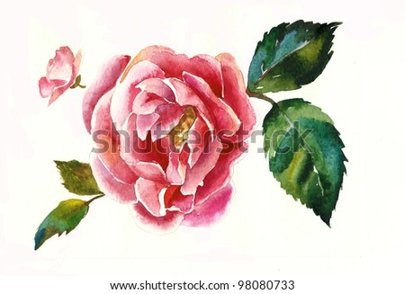 dogrose brunch watercolor - stock photo