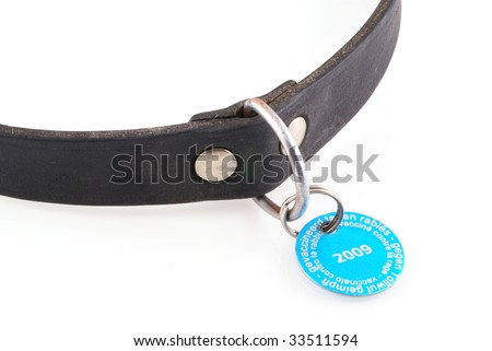 Dogs collar with vaccination tag from 2009; isolated on white. - stock photo
