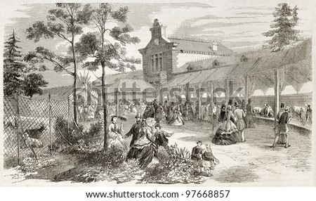 Dogs expo in Paris (Jardin d'Acclimatation) old illustration. Created by Provost, published on L'Illustration, Paris, 1863 - stock photo