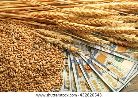 Dollar banknotes and wheat grains. Agricultural income concept - stock photo