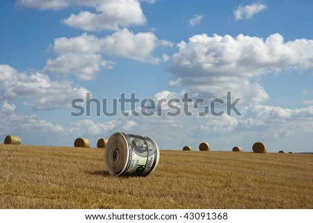 dollar roll on the cleaned wheaten field - stock photo