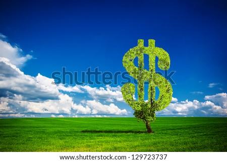 Dollar tree - stock photo