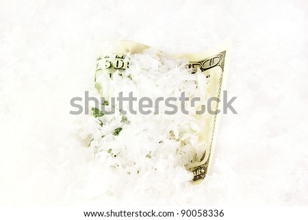 dollars in the snow - stock photo