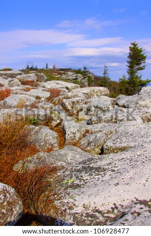 Dolly sods scenic area in West Virginia - stock photo