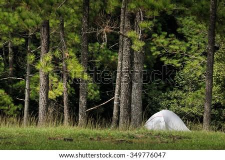 Dome tent camping at Phu Kradueng National Park, Thailand - stock photo