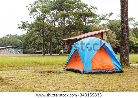 Dome tents camping near pine tree on high mountain after raining - stock photo